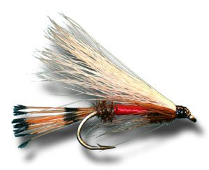 Royal coachman streamer fly fishing fly wet for Amazon fly fishing