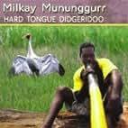 Hard Tongue Didgeridoo