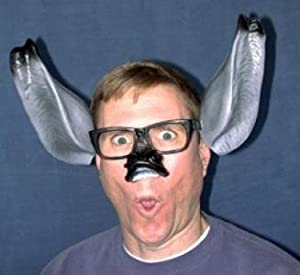 Donkey Ears and Nose Fun Glasses