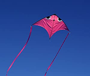 Fish Swim In Sky Delta Kite with Flying Line and Handle (Pink)