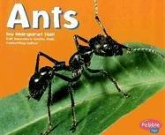 Ants (Bugs, Bugs, Bugs!) PDF