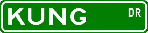 Buy KUNG Street Sign ~ Personalized Family Lastname Sign ~ Gameroom, Basement, Garage Sign **