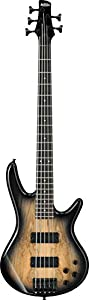 Ibanez GSR205SM 5-String Electric Bass Guitar in Natural Gray Burst With Polishing Cloth, Stand, and Pegwinders by Ibanez