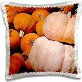 cindy-miller-hopkins-vegetables-california-fall-harvest-fruit-stand-detail-of-pumpkins-16x16-inch-pi