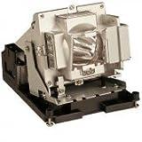 Optoma BL-FS300C, SHP, 300W Lamp Pr
