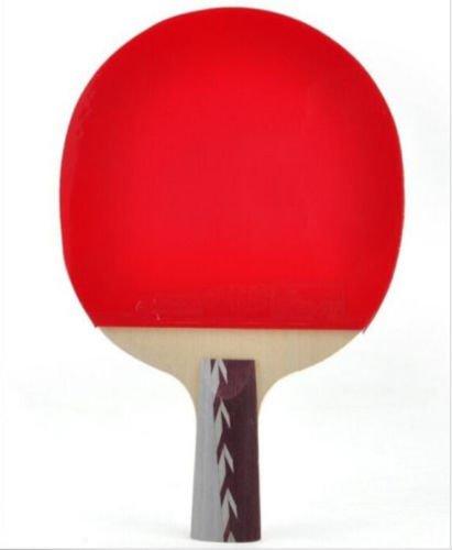 DHS 4006 Paddle Bat Ping Pong Table Tennis Racket Short Handle