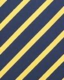 BAXBO Men's Microfiber Adjustable Clasp On Novelty Flask Tie (Hidden 8 Ounce Bladder) Striped Navy Yellow