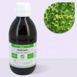 angelique-bio-250ml-extrait-de-plantes-fraiches-bio