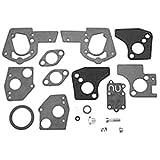 Carburetor Overhaul Kit Replaces Briggs & Stratton 495606 and 494624