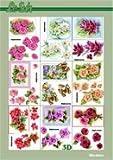 Le Suh Le Suh 3D Decoupage Sheets A4 Book 320013