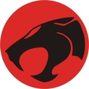 smarts-art-pegatina-fun-bumper-coche-adhesivo-thundercat-logo