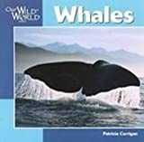 img - for Whales (Our Wild World) book / textbook / text book