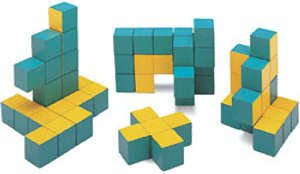 Cheap Learning Resources 3-D Pentomino Puzzle (B00004WKTN)