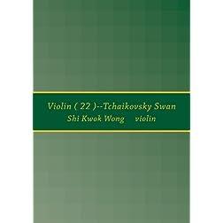Violin ( 22 )--Tchaikovsky Swan