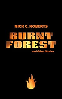 (FREE on 3/21) Burnt Forest And Other Stories by Nick C. Roberts - http://eBooksHabit.com