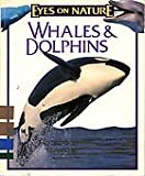 img - for Whales & Dolphins book / textbook / text book