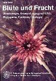 Image de Blüte und Frucht: Morphologie, Entwicklungsgeschichte, Phylogenie, Funktion, Ökologie