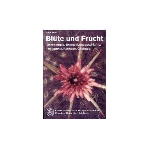 Blüte und Frucht: Morphologie, Entwicklungsgeschichte, Phylogenie, Funktion, Ökologie
