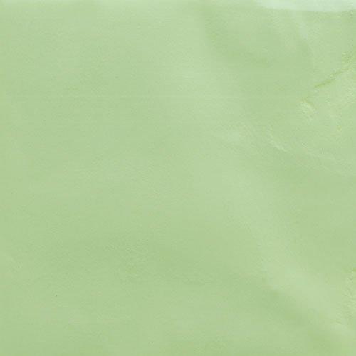 夜光顔料 蓄光性 #101 黄緑 3g