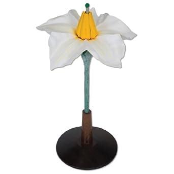 """3B Scientific T21014 2 Part Potato Flower (Solanum Tuberosum), 15"""" Height"""