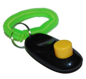 BLACK Big Button clicker with wrist band for Clicker training - click and train dog, cat, horse, pets, by Pet Supply City