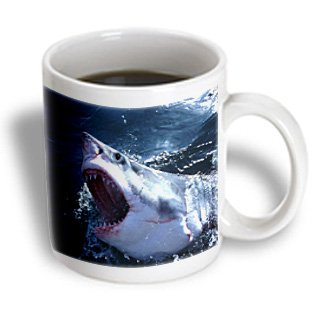 Mug_180610_2 Florene - Fish - Image Of Closeup Of Great White Shark With Open Mouth - Mugs - 15Oz Mug