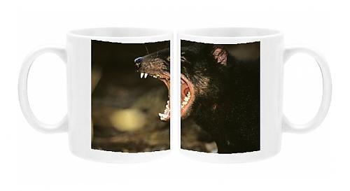Photo Mug Of Tasmanian Devil - Mouth Open Showing Teeth Not Worn (Young Animal)