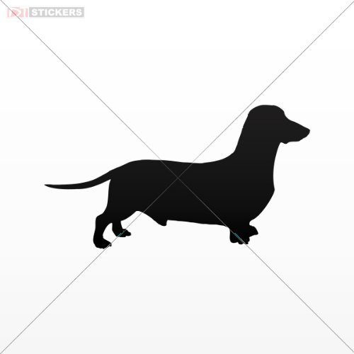 Window Guards For Dogs front-673786