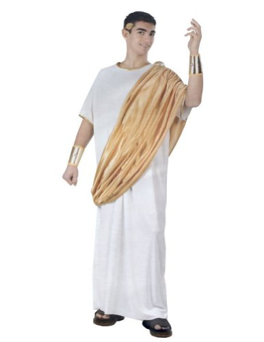 Julius Caesar Adult Mens Costume
