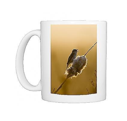 Photo Mug Of Sedge Warbler - Backlit In Early Morning Sunshine Singing From A Bullrush front-593977