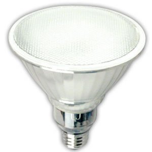 Par38 Floodlight Full Spectrum Compact Fluorescent Light Bulb 23 Watts Energy Star Cfl 50k