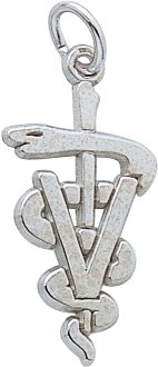 Veterinarian Charm by Rembrandt Charms
