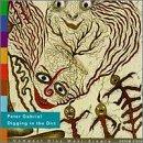 Peter Gabriel - Digging In The Dirt - Zortam Music