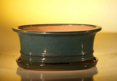 Bonsai Boy's Dark Green Ceramic Bonsai Pot - Oval Professional Series with Attached Humidity Drip Tray 10 75 x 8 5 x 4 125 (Humidity Drip Tray compare prices)