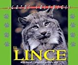 img - for Gatos Salvajes (Wild Cats of North America) - El Lynx (The Lynx) book / textbook / text book