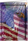 Memorial Day, Eagle with American Flag and Fireworks Card