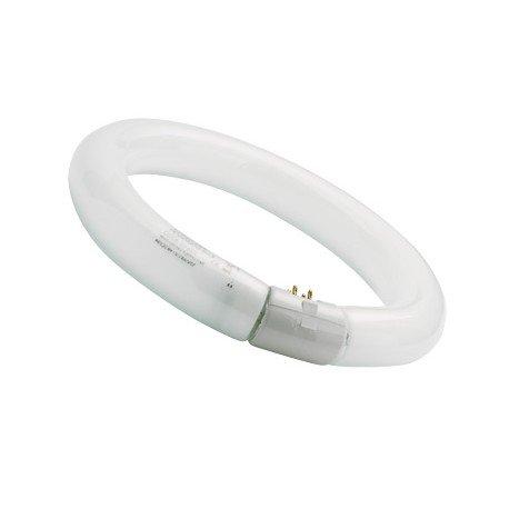 sylvania-0001965-tubo-fluorescente-circular-32w-865-tr