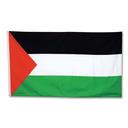 Palestine Large Flag - One Size (Palestine Football Jersey compare prices)