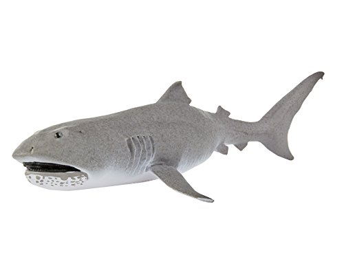 Safari Ltd Wild Safari Sealife - Megamouth Shark - Rare