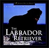 Labrador Retriever - Dog That Does It All