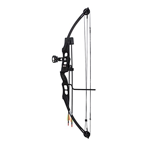 SAS-Sergeant-55-Lb-29-Compound-Bow-Package-with-3-Pin-Sight-Arrow-Rest-Quiver-Arrows-Arm-Guard-and-Finger-Tab