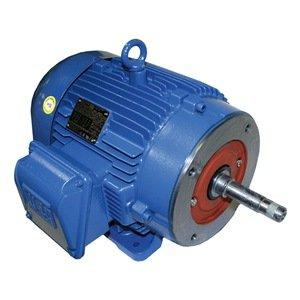 Pump Motor 3 Ph 40 Hp 3535 575v 286jp Price Pumps