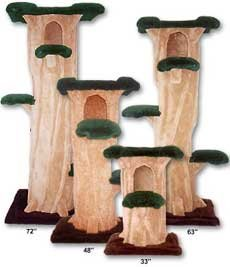Kitty Hollow Cat Tree : Size 63 INCH : Color - Base Brown : Color - Top/Leaves Dark Green : Color - Trunk Dark Beige