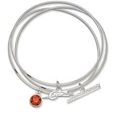 Junior Nation Dale Earnhardt Triple Nascar Bangle Bracelet Set W/ Orange Crystal Size: 7
