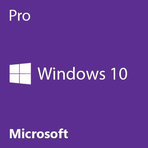 Windows 10 Professional 64-bit