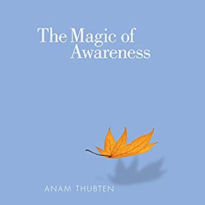 The Magic of Awareness (       UNABRIDGED) by Anam Thubten, Sharon Roe Narrated by Fred Stella