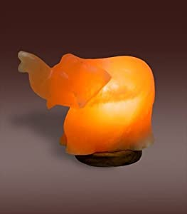 Himalayan Salt Lamps Evolution : Amazon.com: Evolution Salt EEL Himalayan Crystal Salt Lamp - Elephant Shape: Health & Personal Care