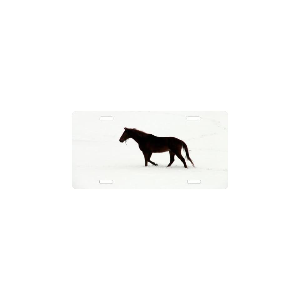 Rikki KnightTM Black horse on white snow Cool Novelty License Plate   Unisex   Ideal Gift for all occassions