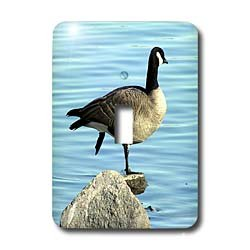 Cassie Peters Photography - Canada Goose Photographed by Angelandspot - Light Switch Covers - single toggle switch