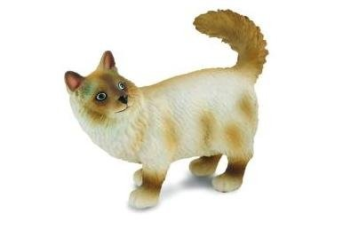CollectA Birman Cat (Standing)